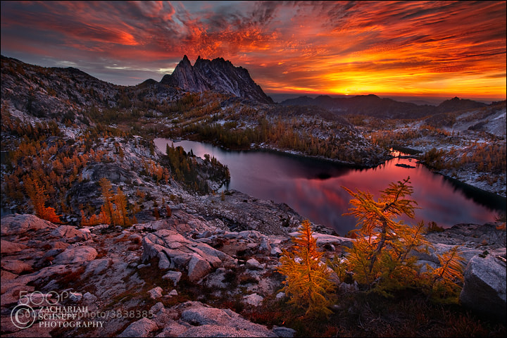 Photograph Blazing Enchantments by Zack Schnepf on 500px