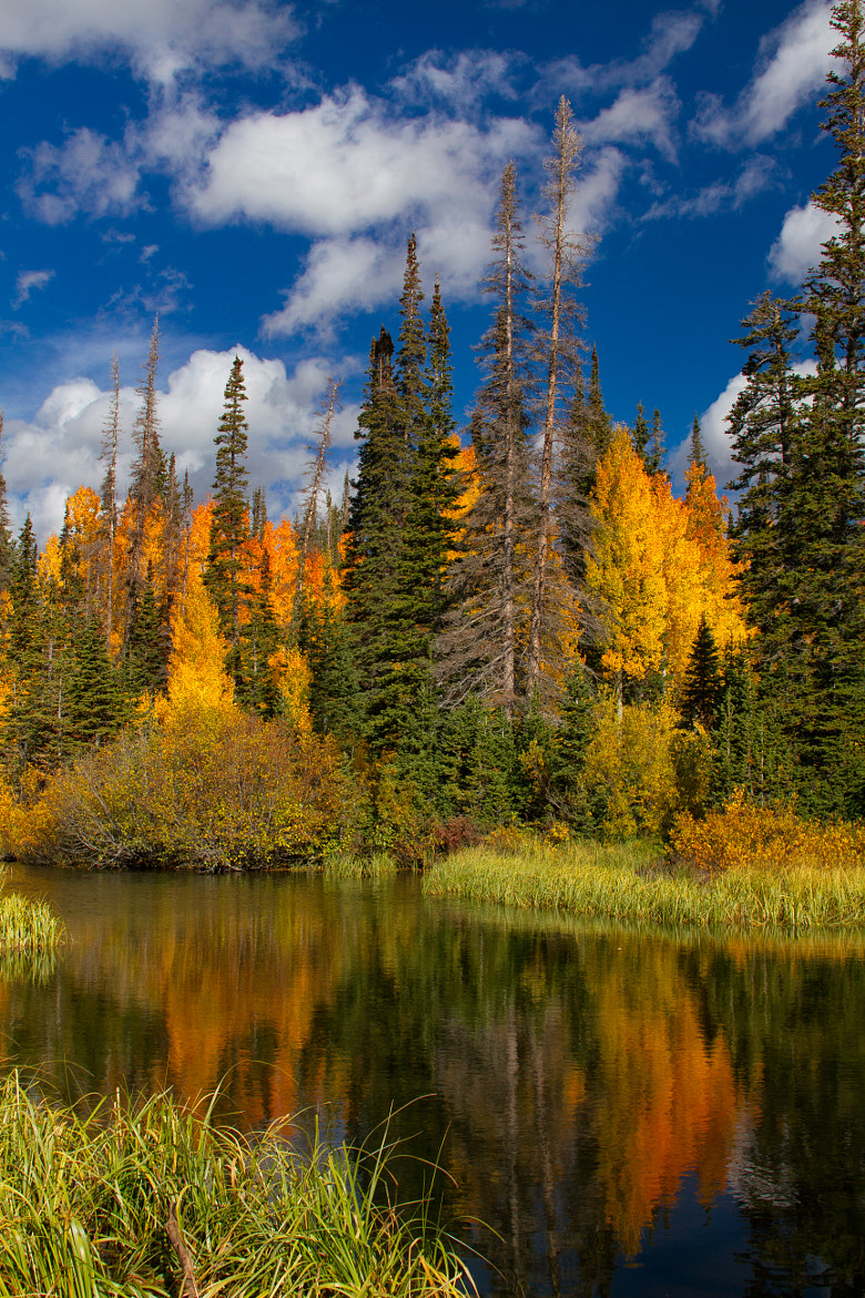 Photograph Silver Lake Fall Colors by Scott Stringham on 500px