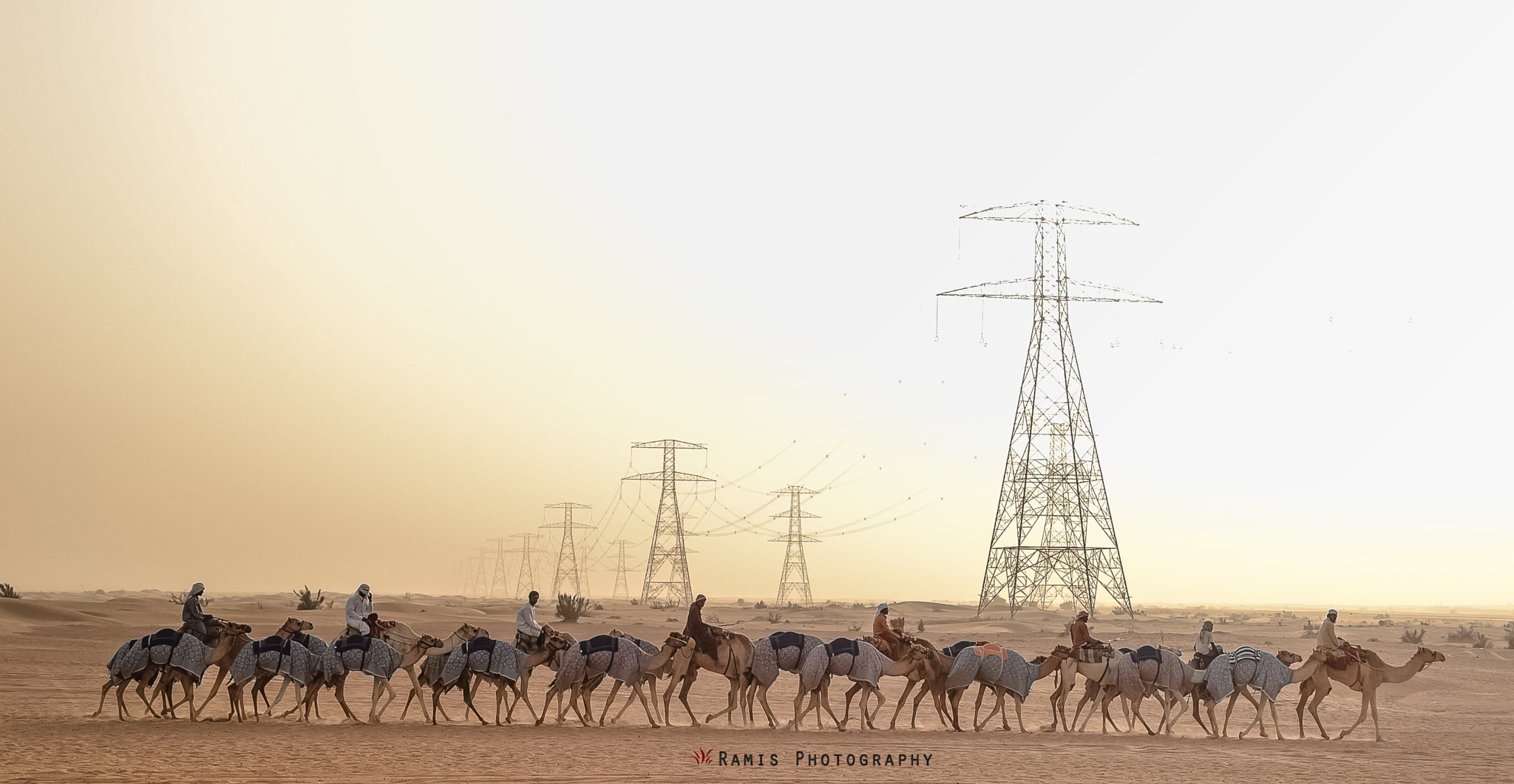 Photograph Desert Life by Mohammed  Ramis  on 500px