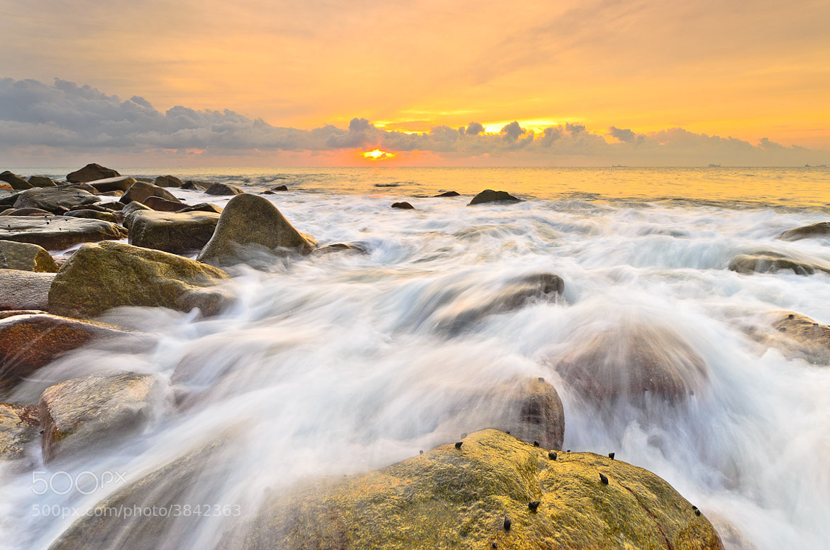 Photograph golden morning by Mk Azmi on 500px
