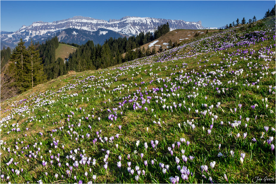 Photograph Spring in the Mountains by Jan Geerk on 500px