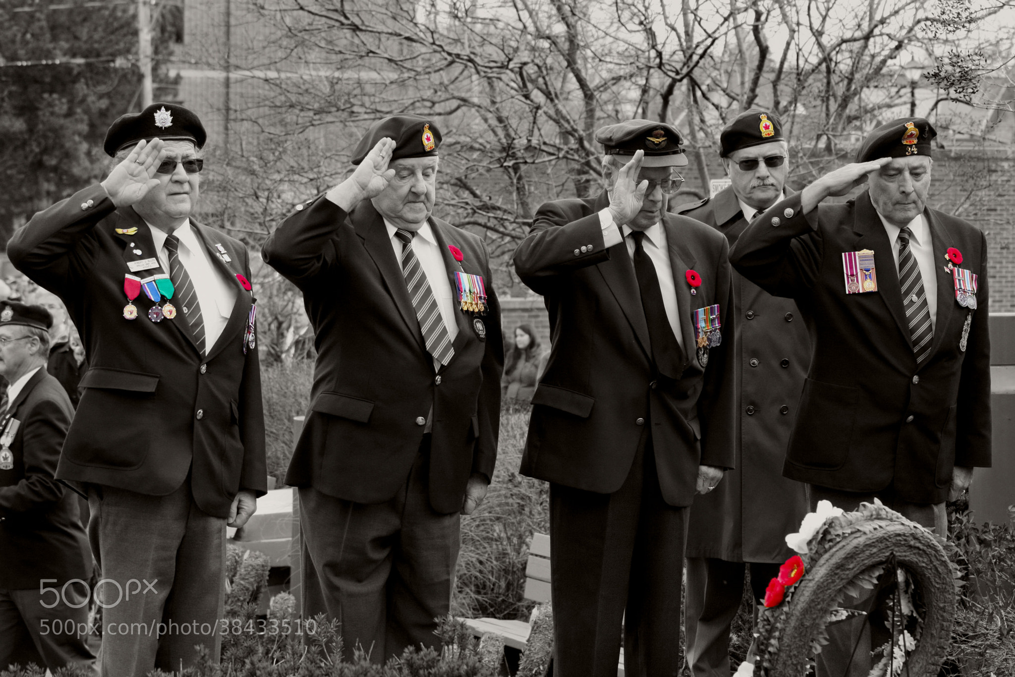 Photograph Saluting Old Comrades by Optical Artworx on 500px