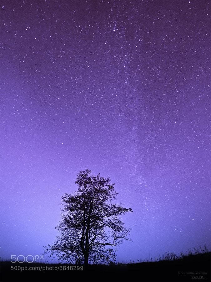 Photograph Night sky by Konstantin Voronov on 500px