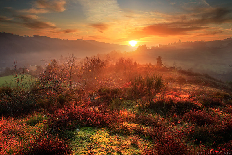 Photograph Fantasy Realm by Florent Courty on 500px