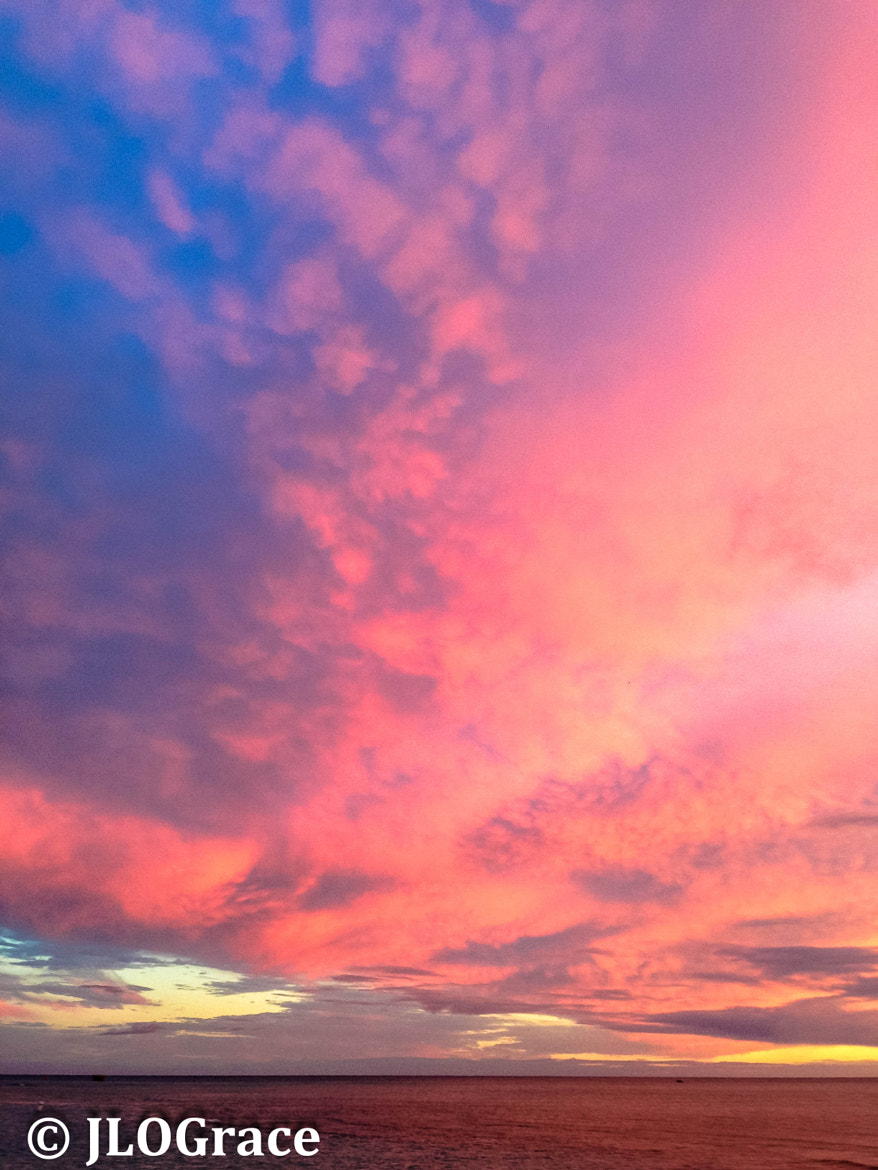 Photograph Pink Sunset by Janis Grace on 500px