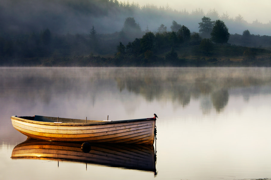 Photograph Swallows Rest... loch Rusky... by David Mould on 500px