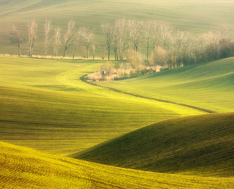 Photograph Spring pulpit by Marcin Sobas on 500px