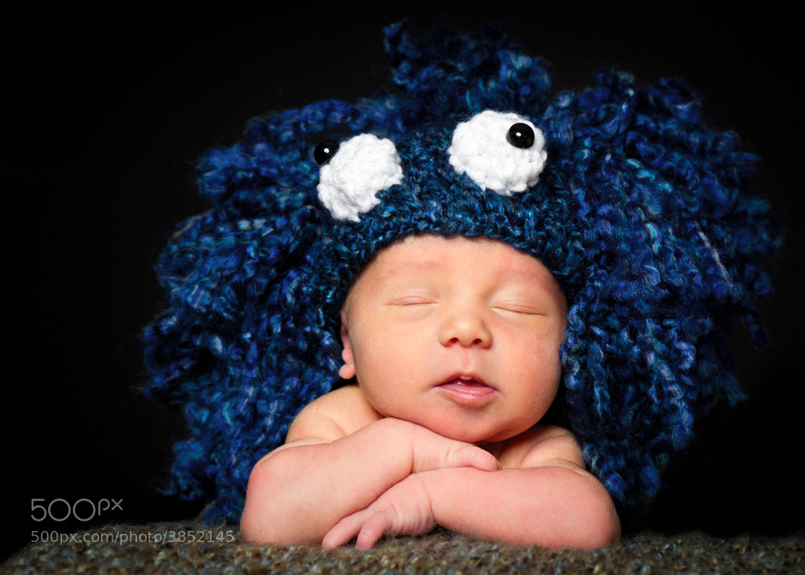 Photograph cookie monster ;) by Mike Kremer on 500px