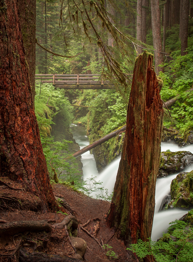 Photograph Sul Duc Falls by Stevan Tontich on 500px