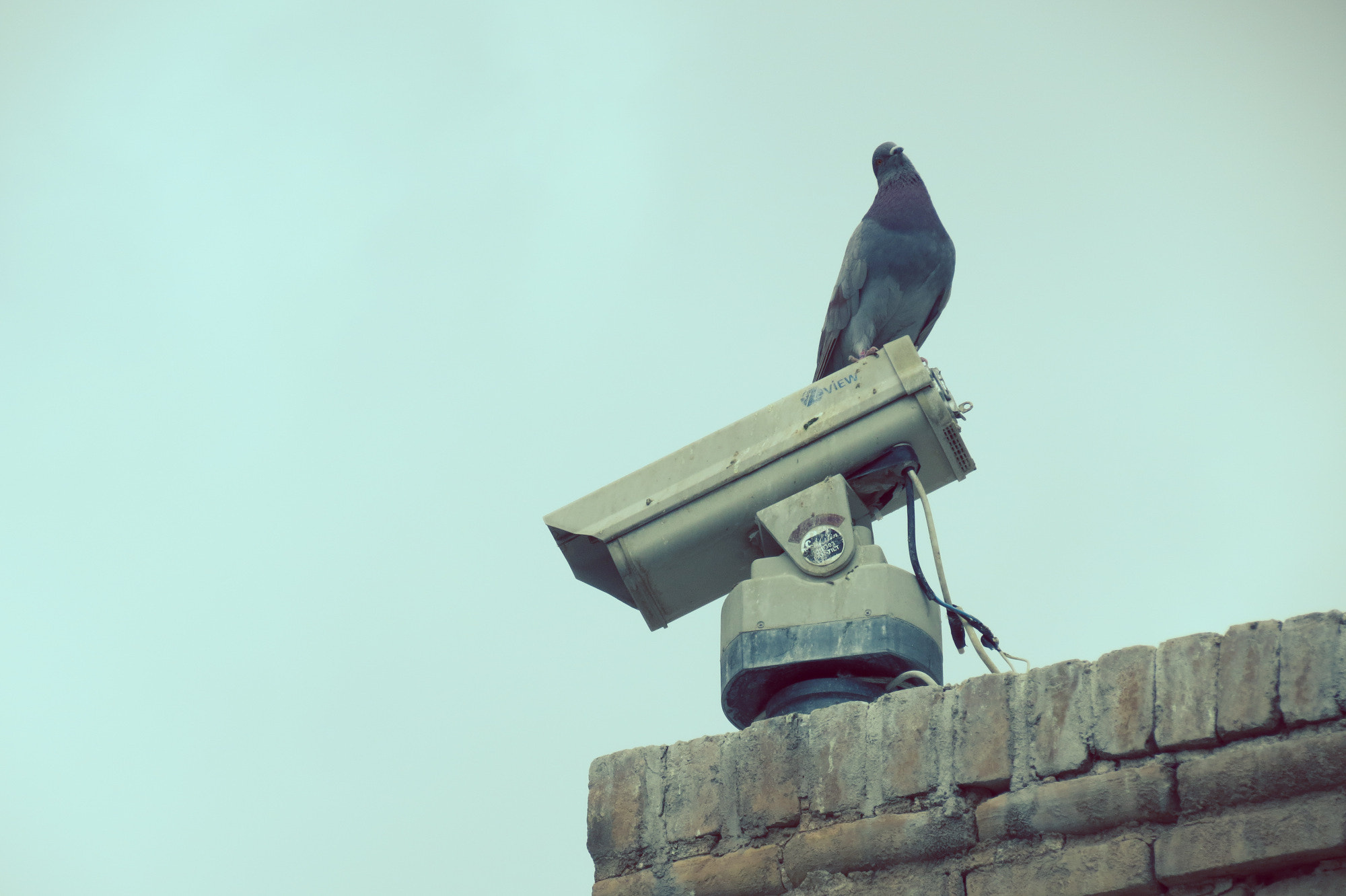 Photograph surveillance by Milad Ghasemi on 500px