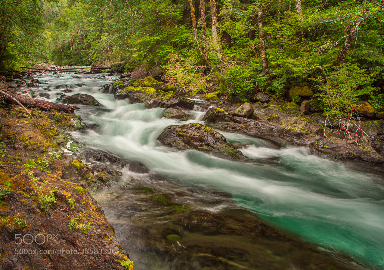 Photograph Sol Duc River by Stevan Tontich on 500px