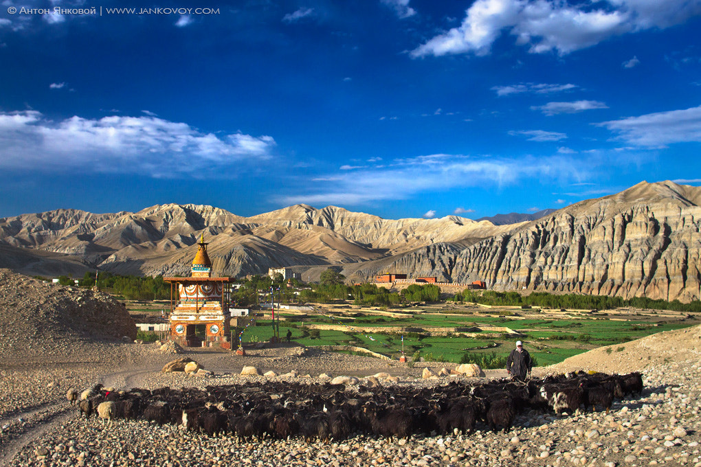 Photograph Tsarang (3,490 m), Upper Mustang by Anton Jankovoy on 500px