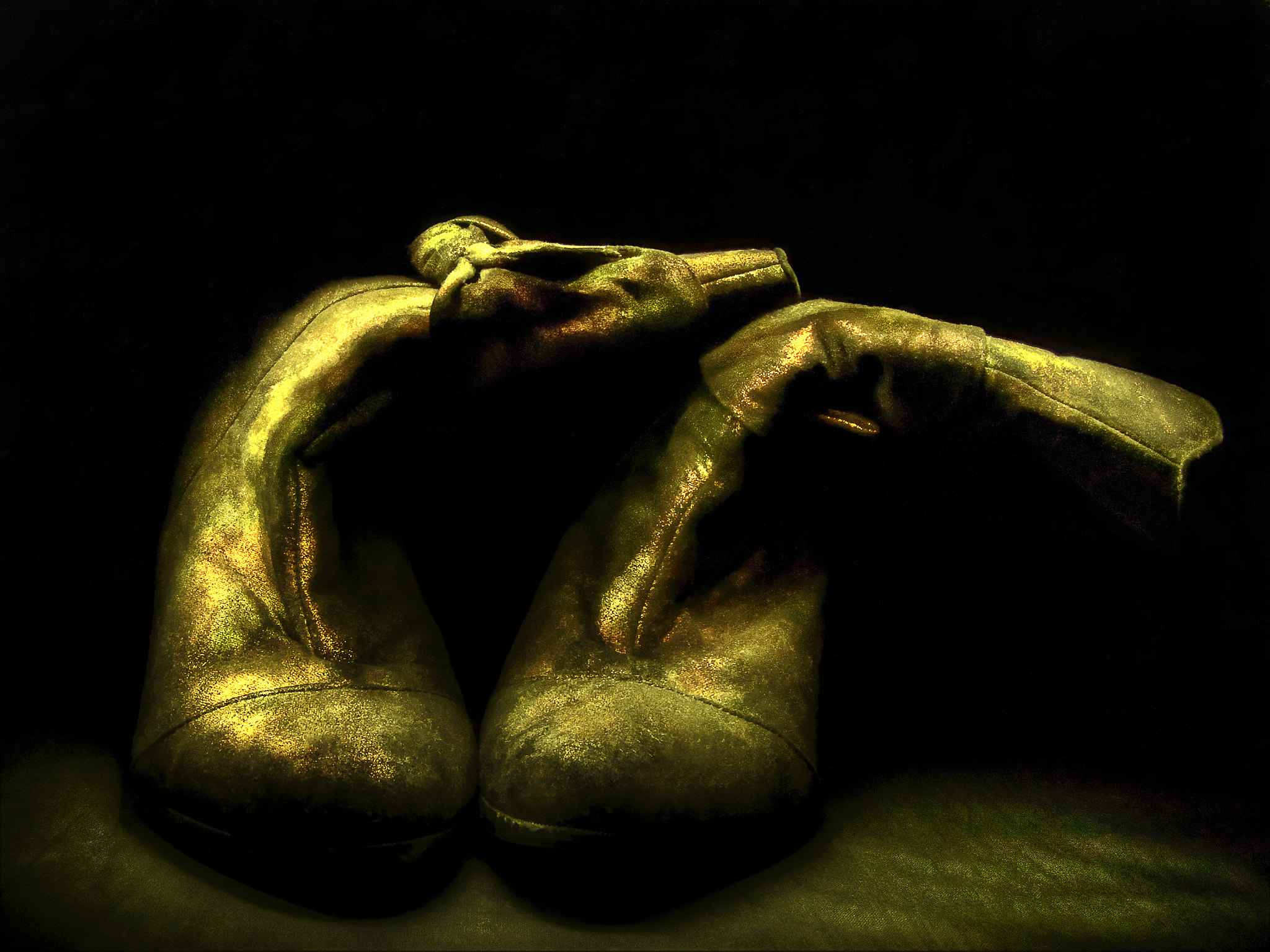 Photograph Golden shoes by Sirenja  on 500px