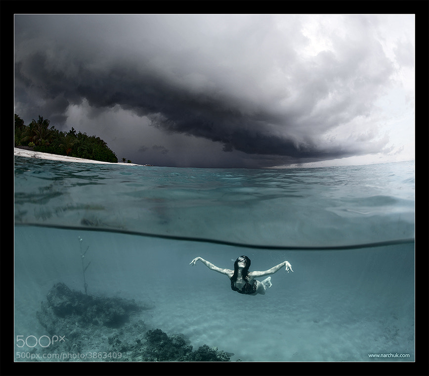 On the wings of the storm by Andrey Narchuk (narchuk)) on 500px.com