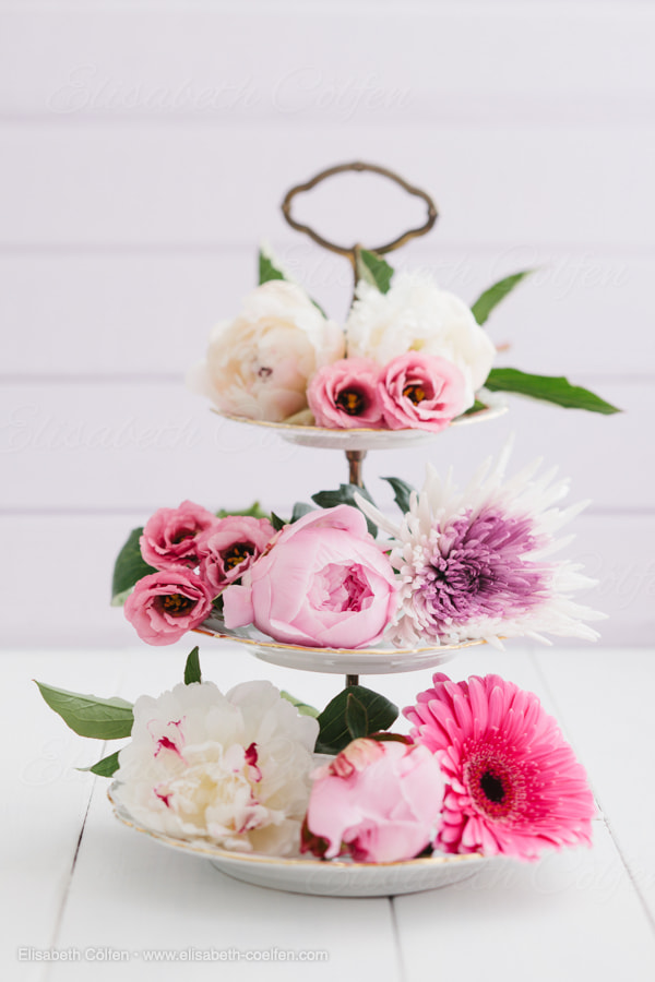Photograph Summer flowers by Elisabeth Coelfen on 500px