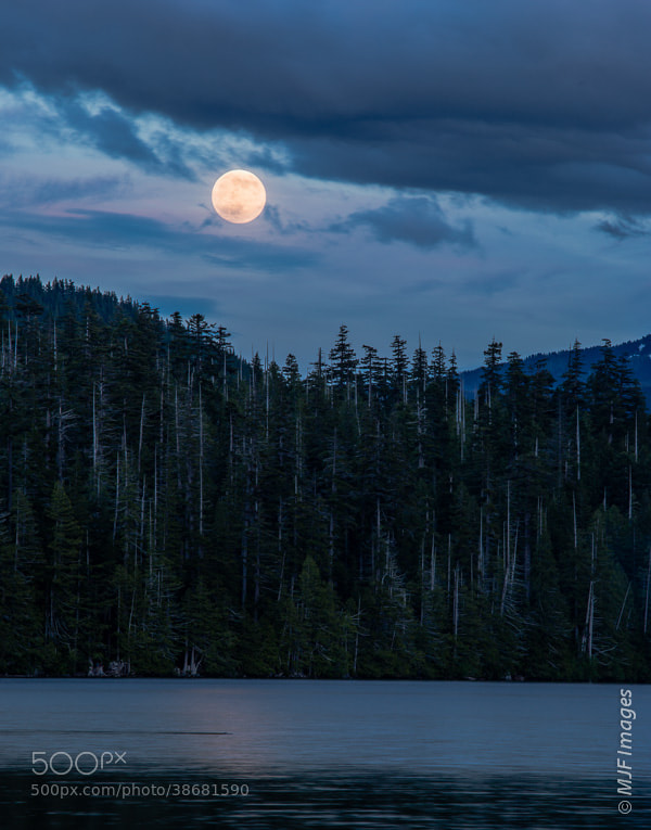 Photograph Full Moon at Perigee by Michael Flaherty on 500px