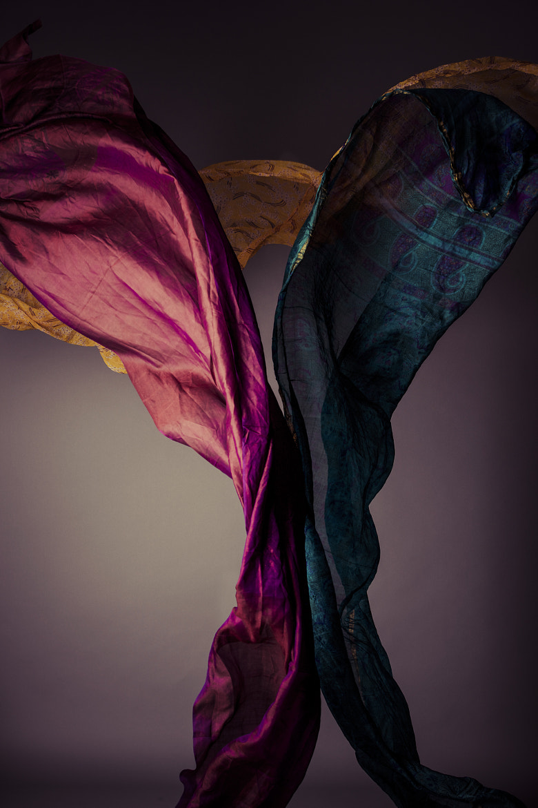 Photograph Colourfall by Maresa Smith on 500px