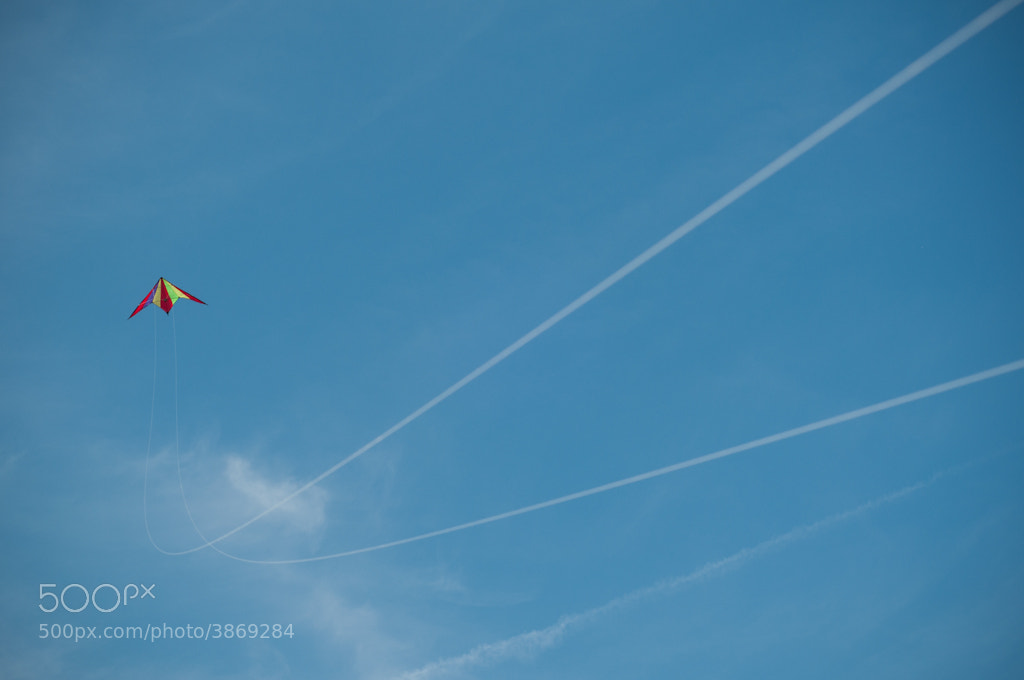 Photograph The Kite by Stefan Cionca on 500px