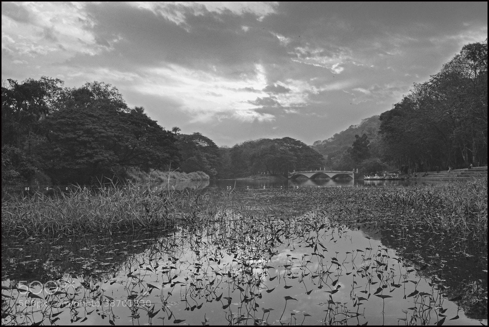 Photograph Untitled by yogesh waikul on 500px