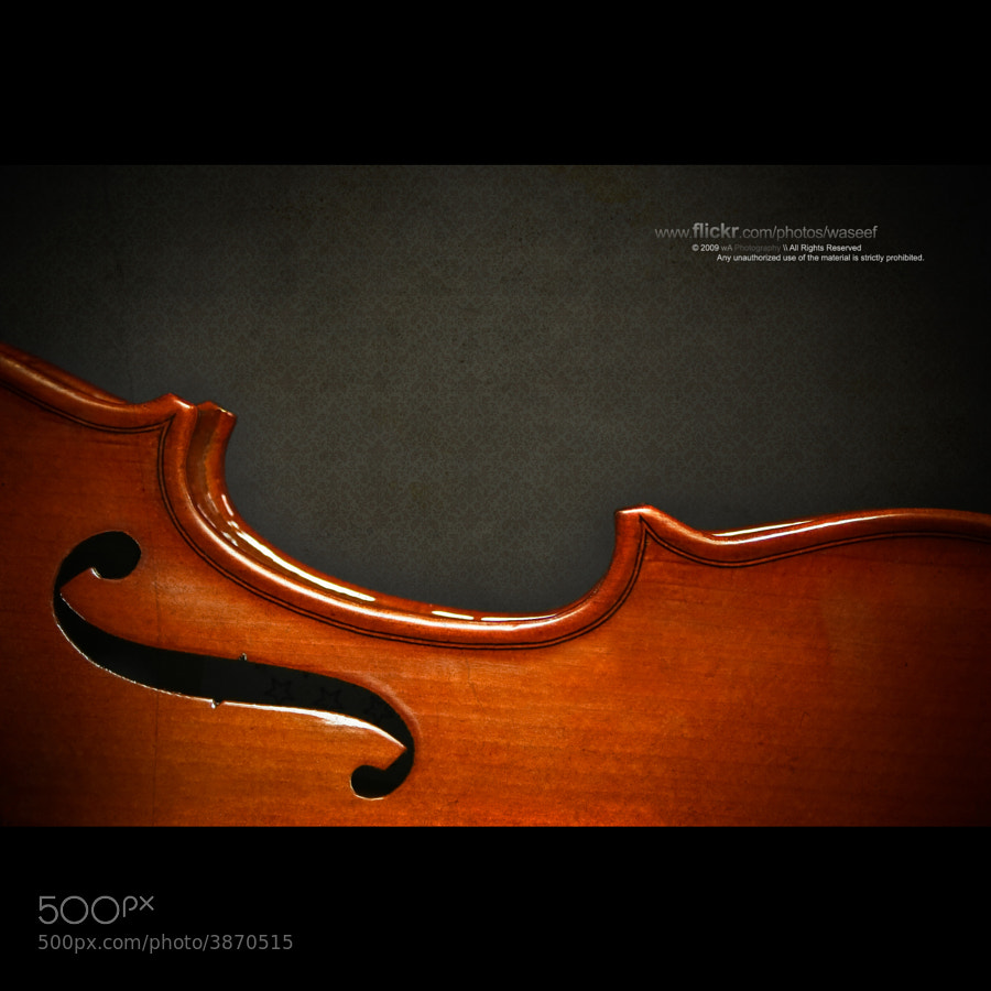 Body of a Violin, in the spotlight, isolated with a dark textured background.