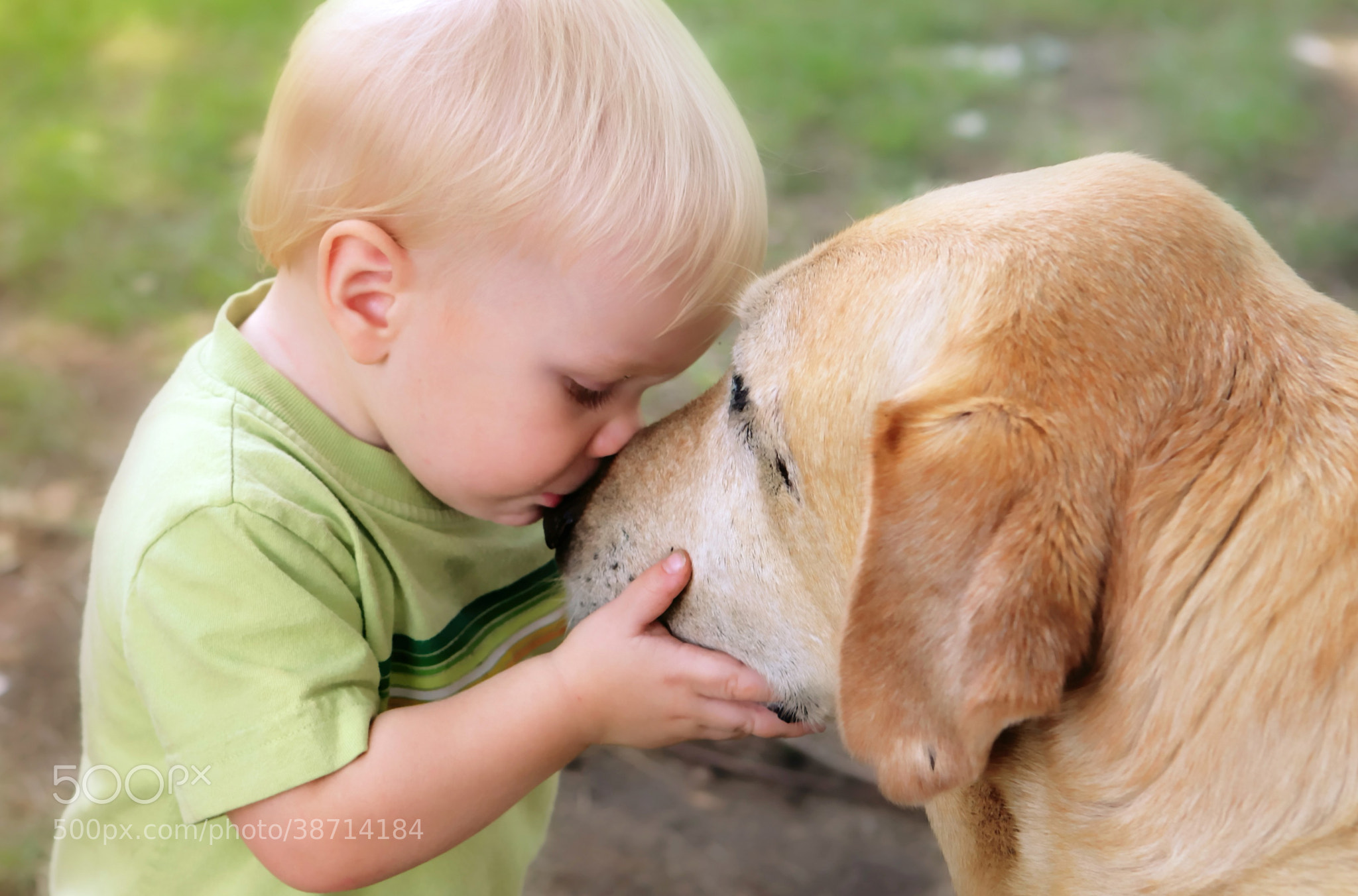 Photograph Unconditional Love by William Roberts on 500px
