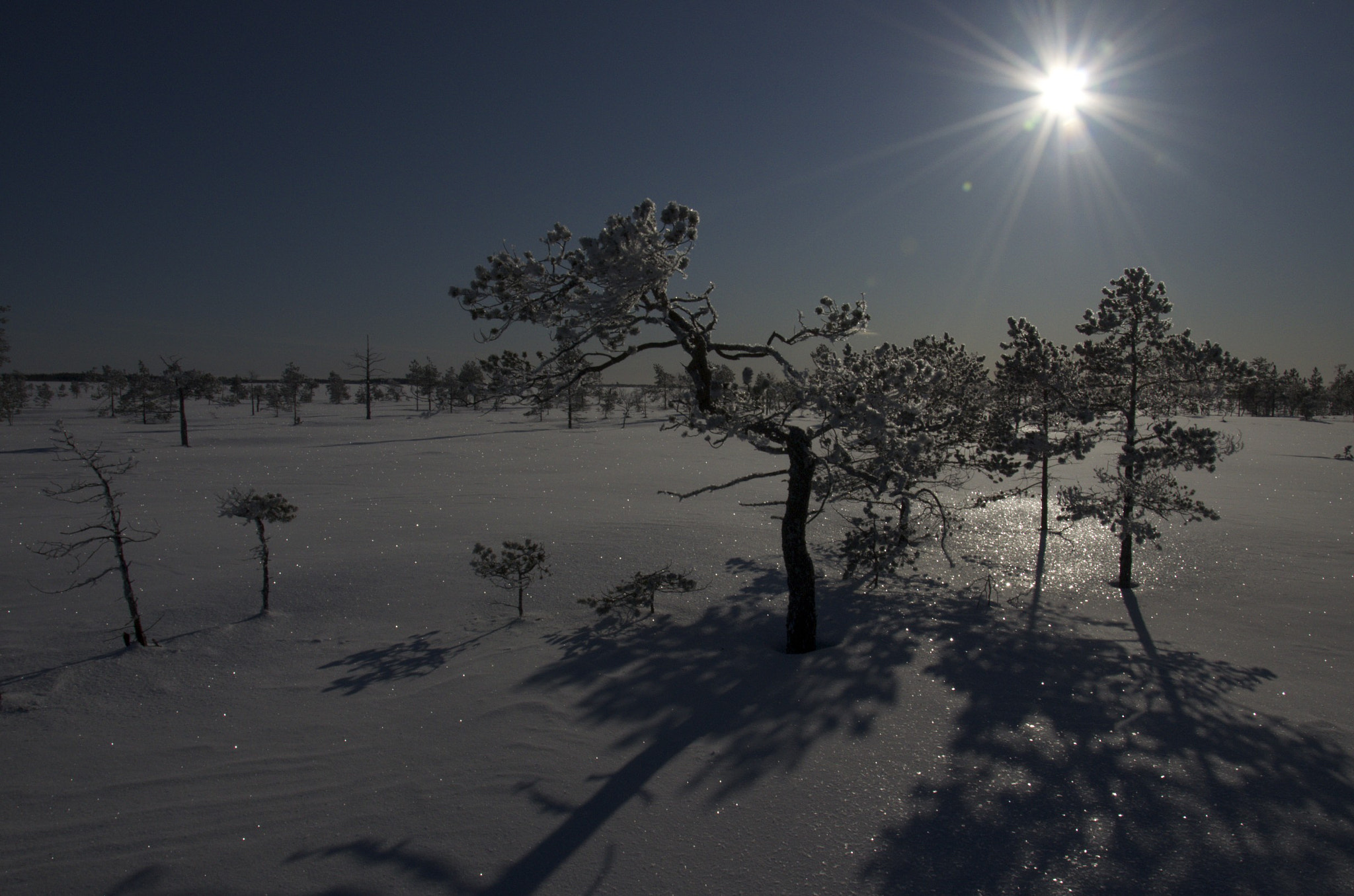 Photograph Martimoaapa Mire Covered by Snow by Jarkko Tervonen on 500px