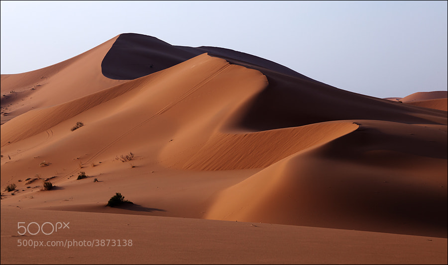 Photograph Dunes VI by Waleed Marhoum on 500px
