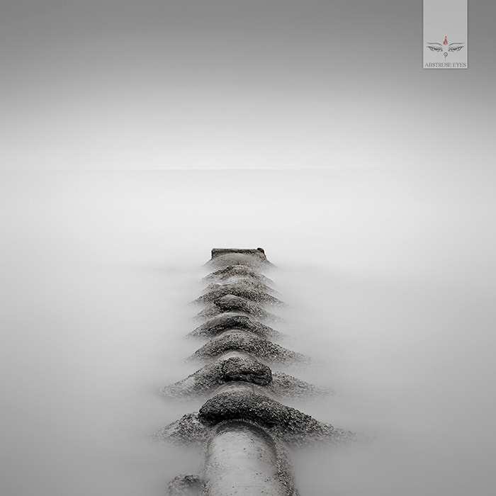 Photograph SPINE by Abstruse Eyes on 500px