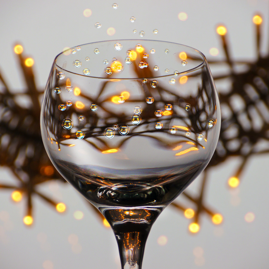 Photograph Christmas Cheers by Marianna Armata on 500px