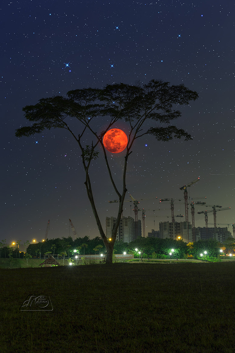 Photograph Supermoon Fantasy by Partha Roy on 500px