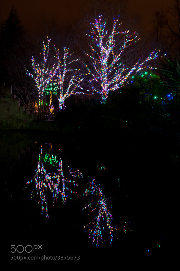 Photograph DC Zool Lights 01 by Jason Parker on 500px