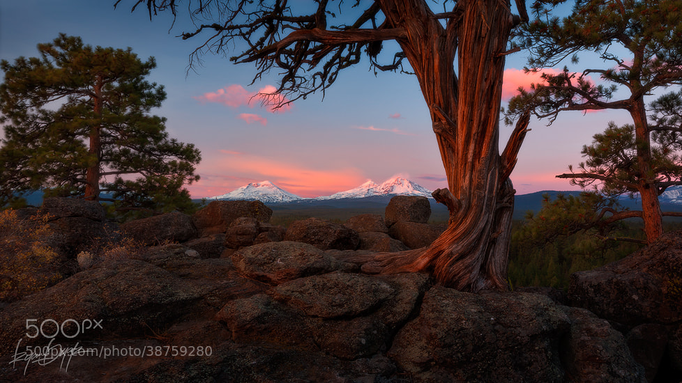 Photograph Juniper Ridge by Ryan Dyar on 500px