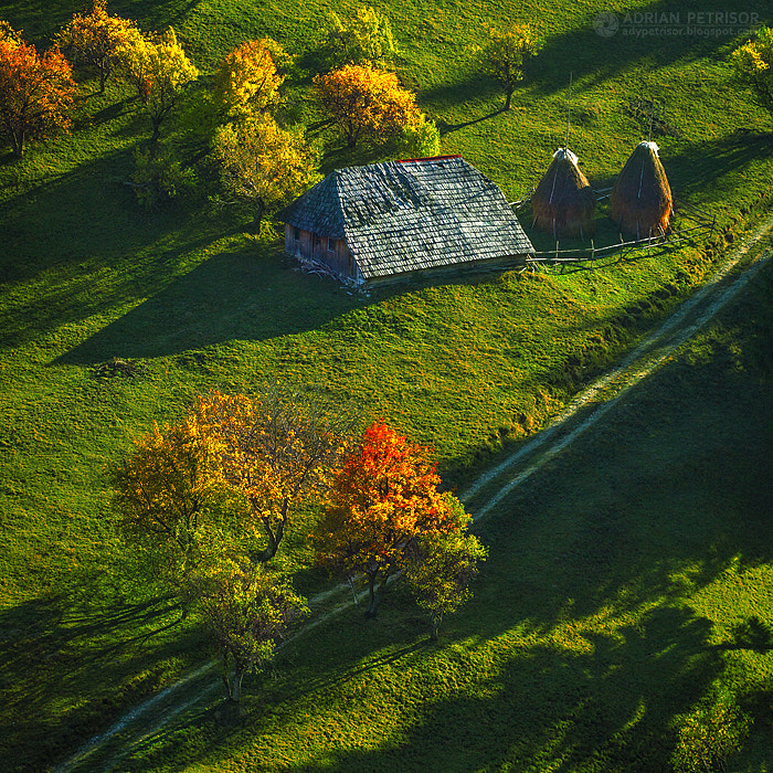 Photograph Colours and shadows by Adrian Petrisor on 500px