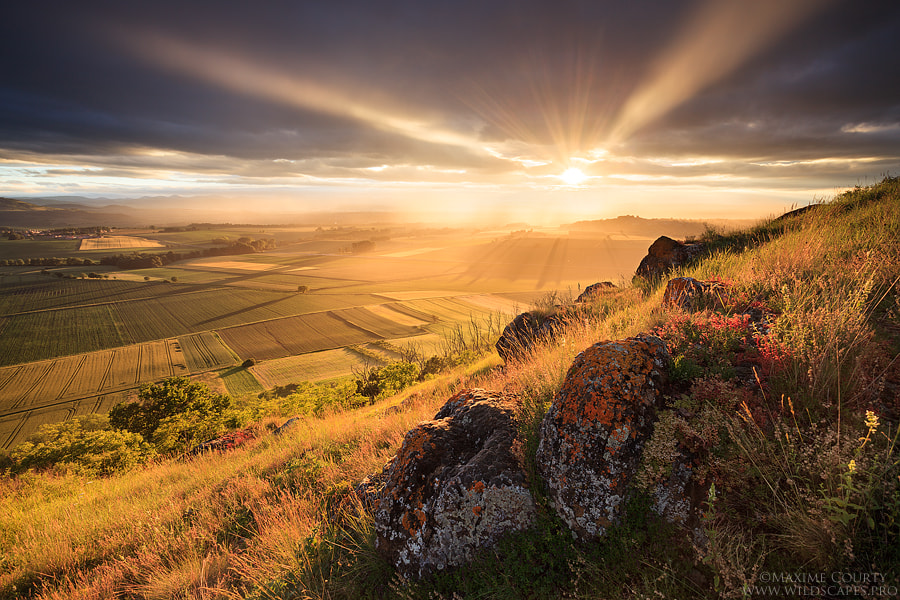 Photograph The Greatest Light by Maxime Courty on 500px