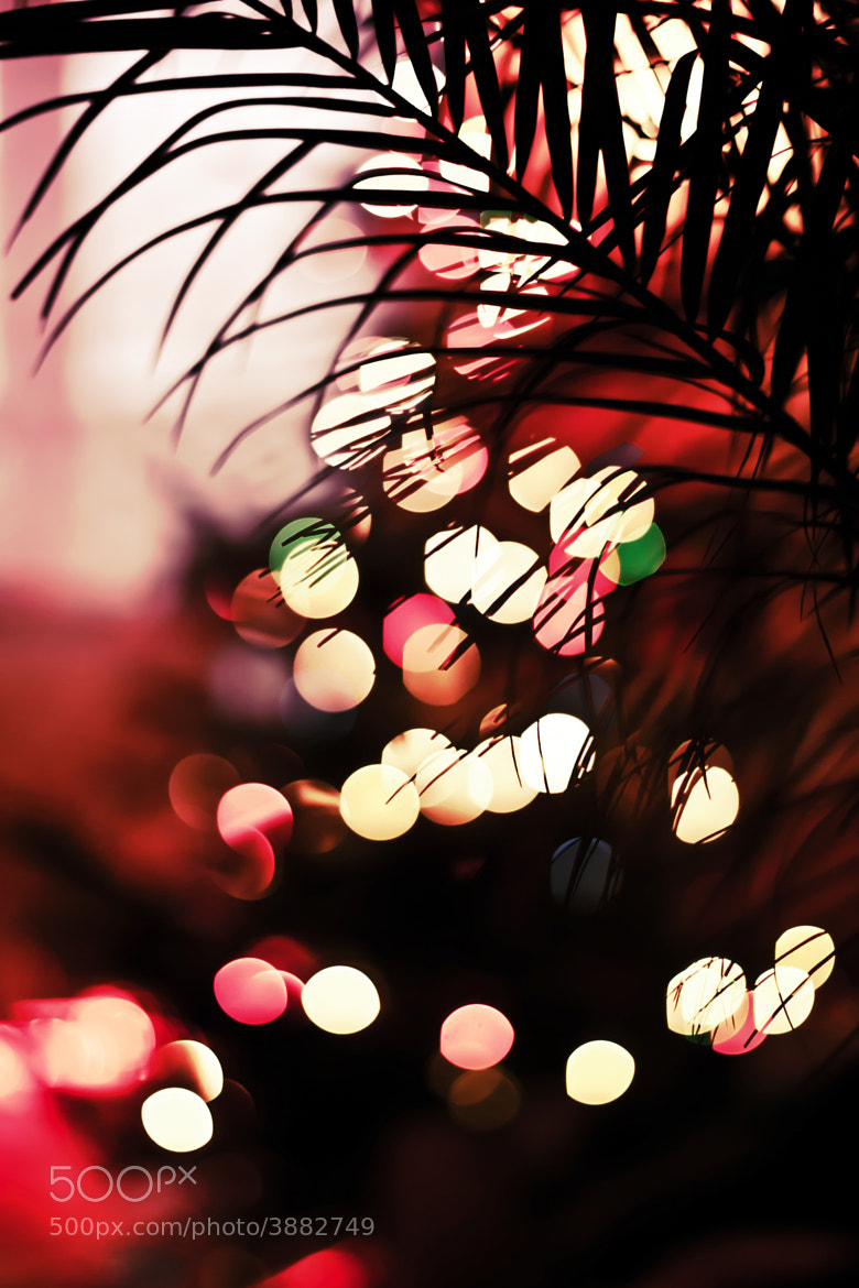 Photograph Christmasbokeh. by Martin Heinz on 500px
