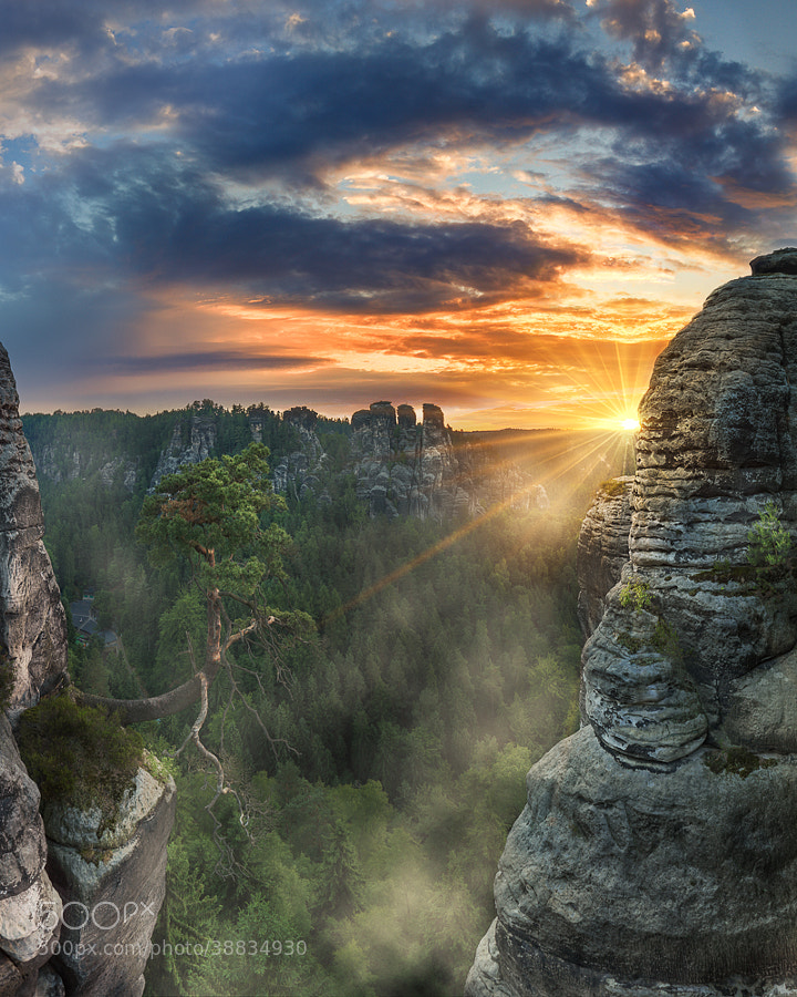 Fog in morning hours in Elbe Sandstone Mountains