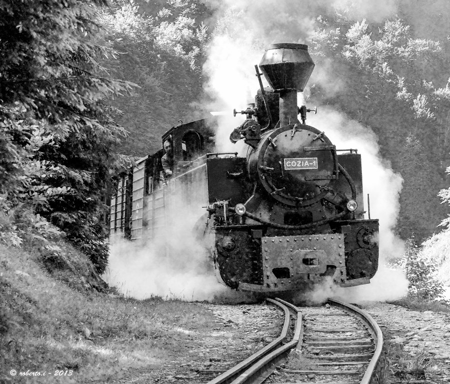 Photograph Forest train by Roberto Iosupescu on 500px