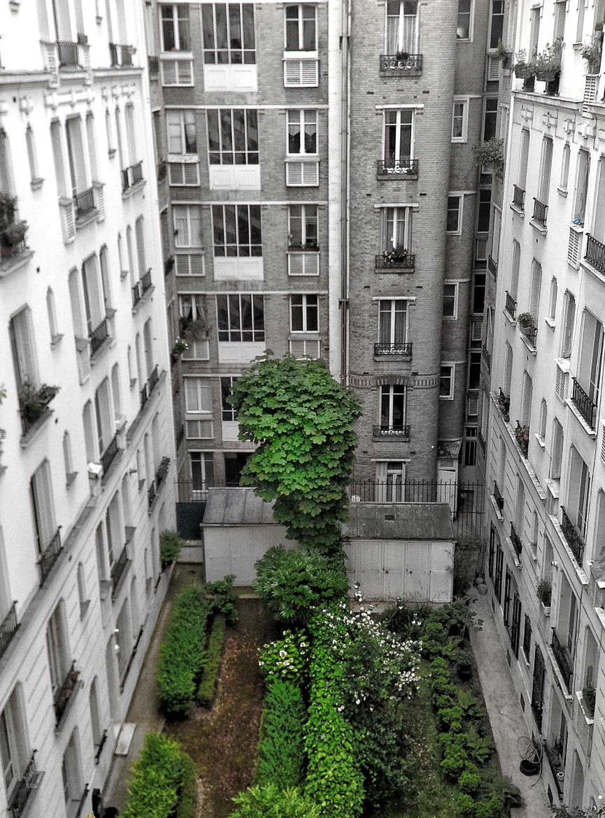 Photograph NaturE # UrbanitY #2 by Guillaume Rio on 500px