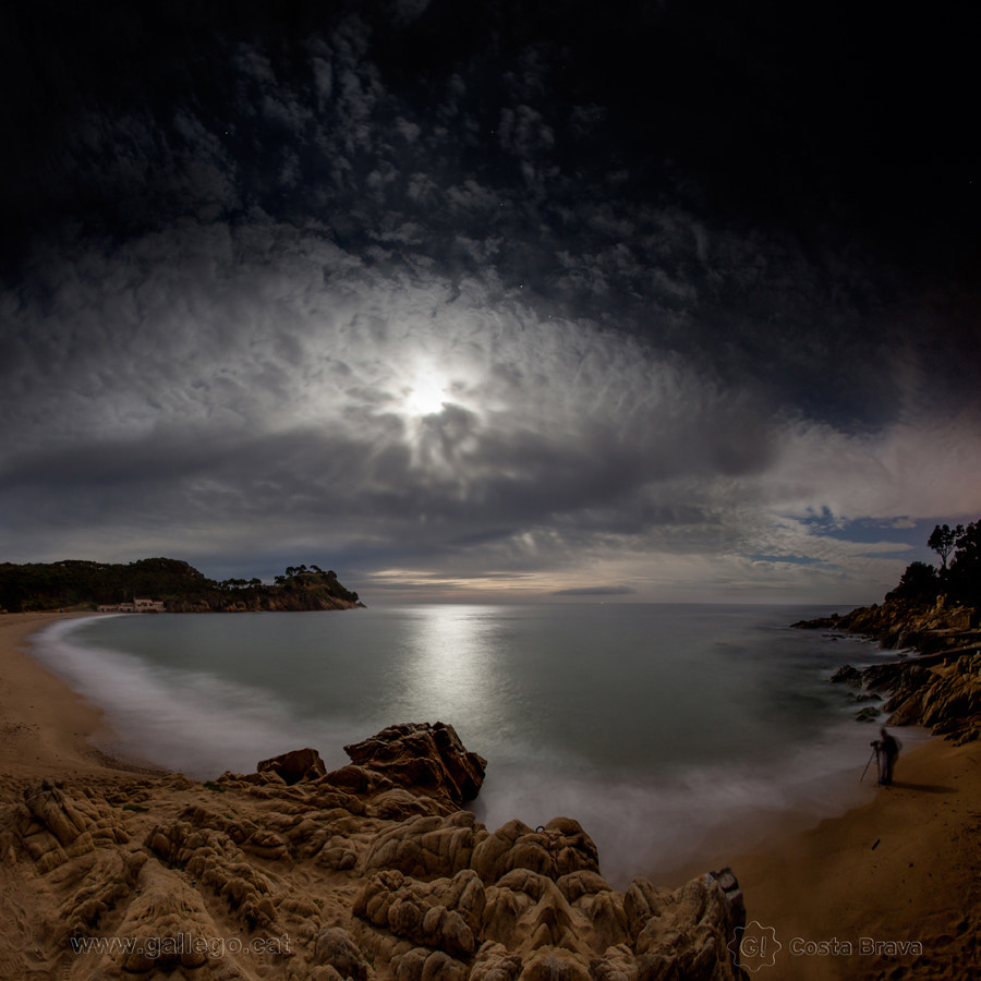 Photograph Costa Brava, live nature 25 by Jordi Gallego on 500px