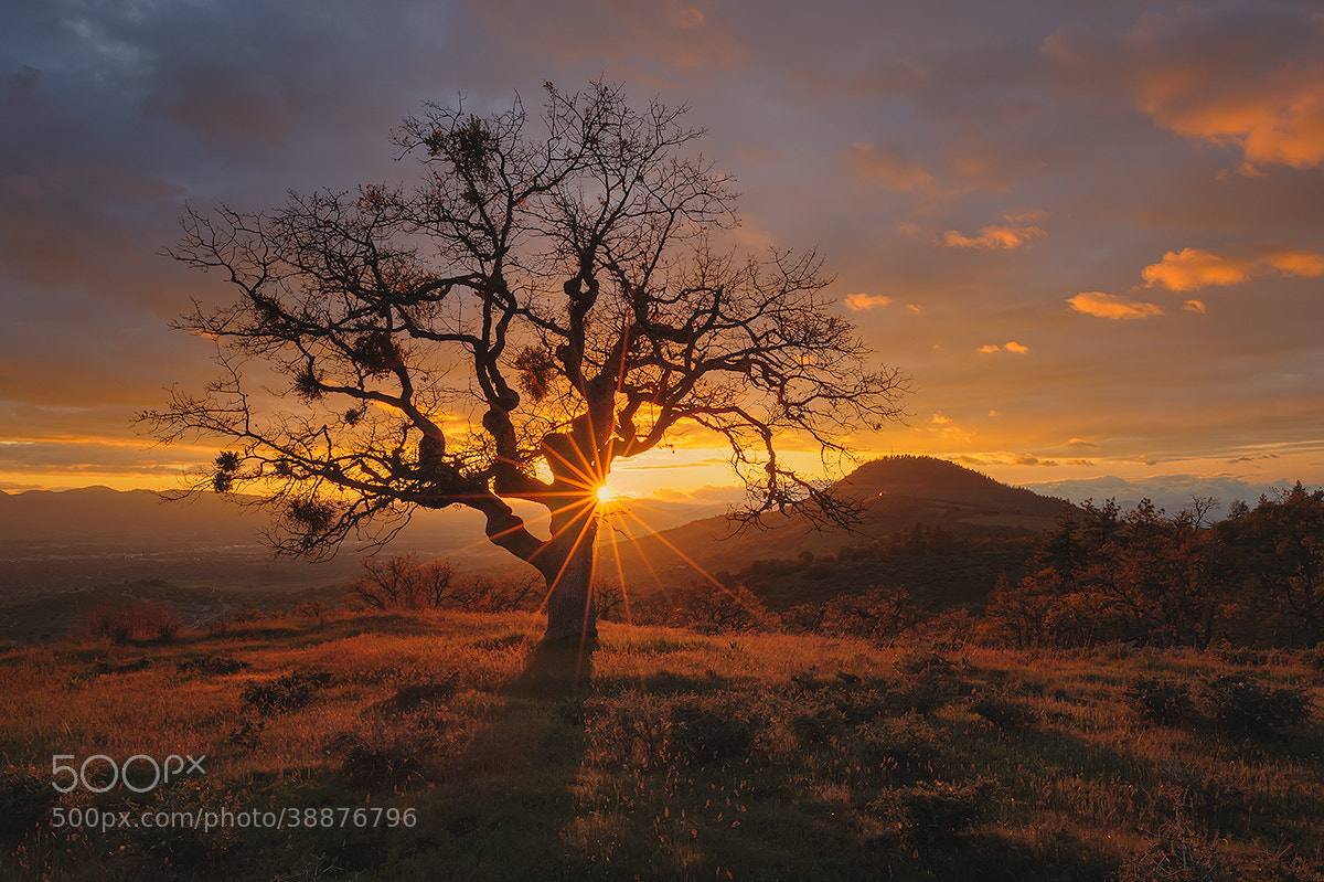 Photograph Rogue Valley Sunset by Deb Harder on 500px