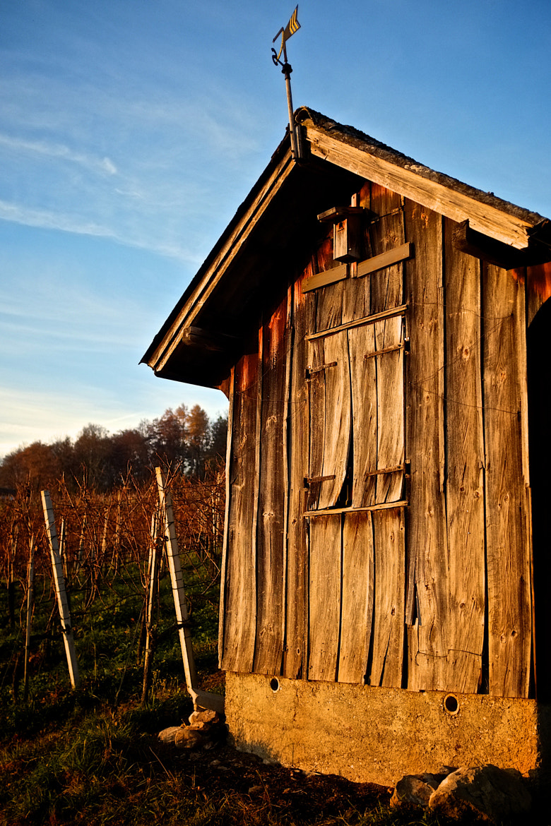 Photograph The OId Shed by Alexander Schmid on 500px