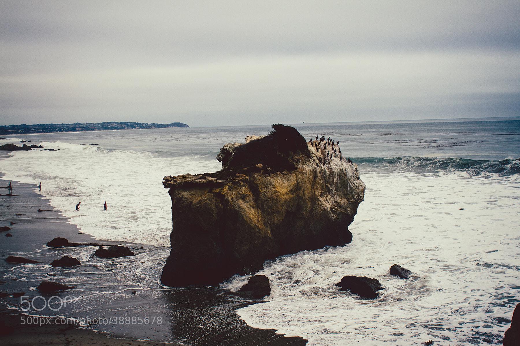 Photograph El Matador Beach by Lexie Alley on 500px