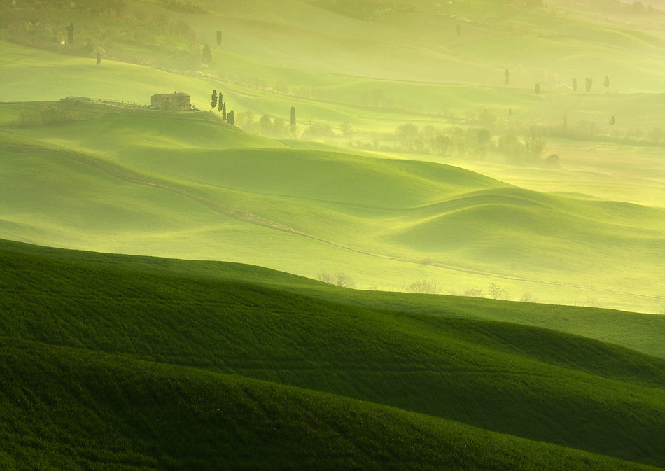 Photograph On dewy hills by Marcin Sobas on 500px