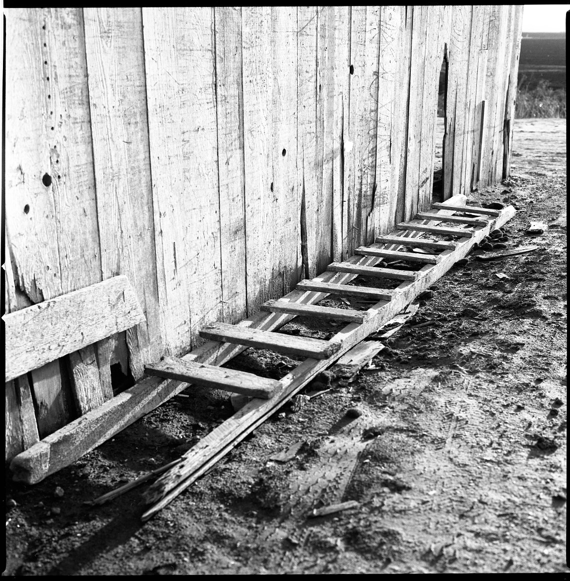 Photograph Ladder on the Ground by Brad Tito on 500px