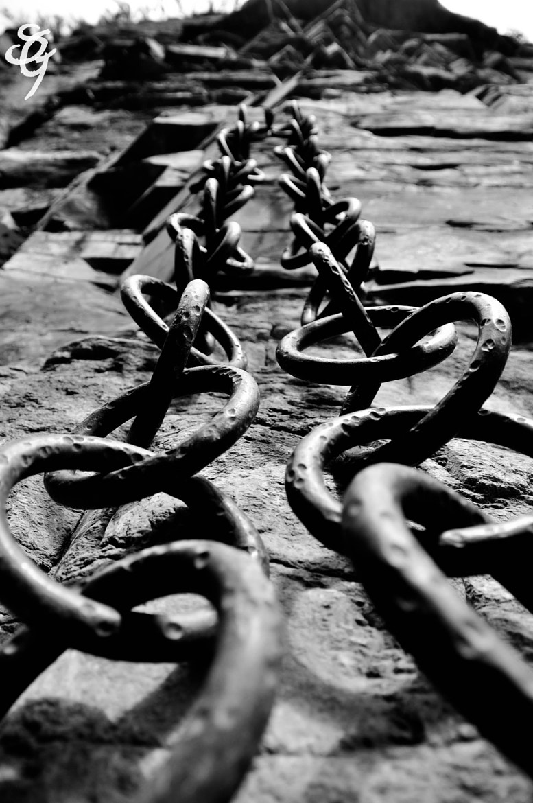 Photograph Chains Of Life by Sergi Grigorian on 500px