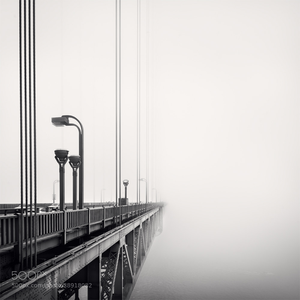 Photograph Fog - San Francisco,*670 - USA by Ronny Ritschel on 500px