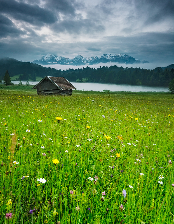 Photograph Morning Mood by Simon Bauer on 500px