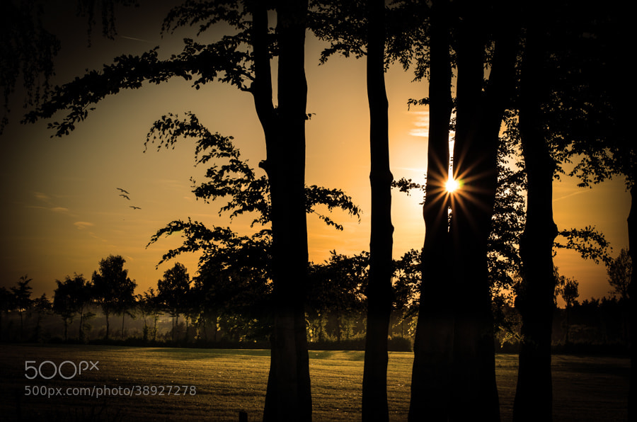 Photograph sunset at home by Gunter Werner on 500px
