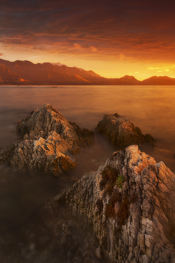 Photograph Kaikoura Gold by Dylan Toh  & Marianne Lim on 500px