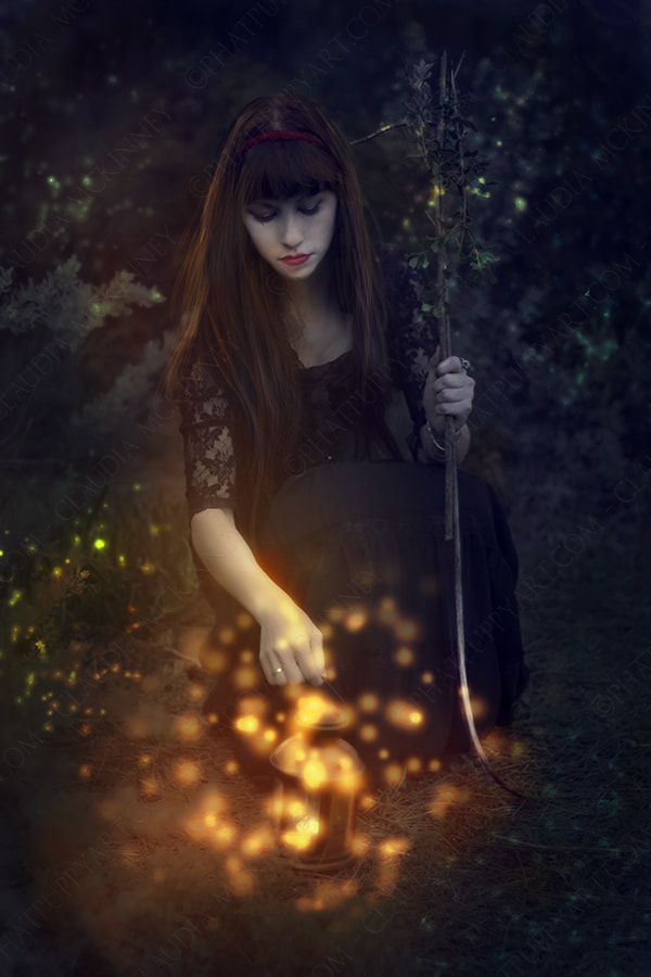 Photograph Firefly Summer by Phatpuppy Art on 500px